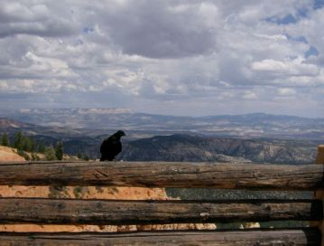 Bryce Canyon04