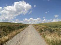 Camino017