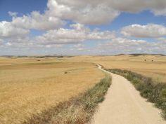Camino033