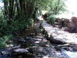 Camino057