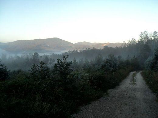 Camino089
