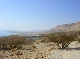 I hitched from the outskirts of Jerusalem to Ein Gedi.