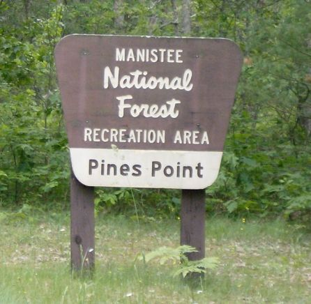 Manistee National Forest02