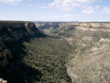 Mesa Verde11