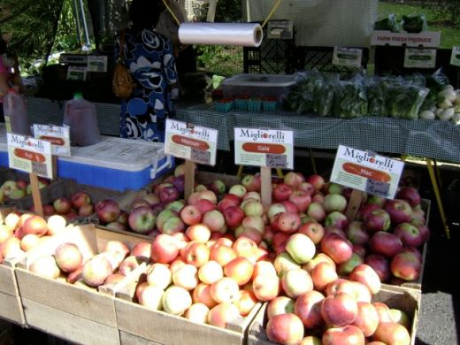 New York Farmers' Markets21
