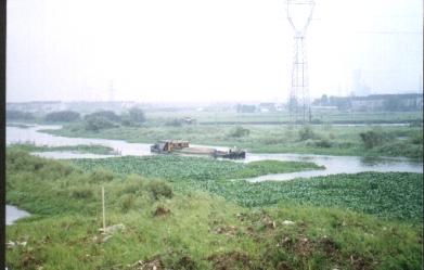 Suzhou 9907