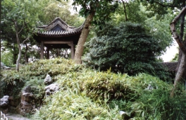 Suzhou 9912