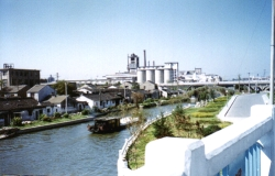 Suzhou 9919