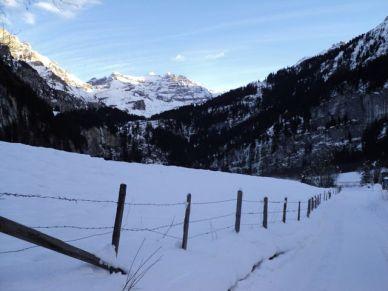 Switzerland35