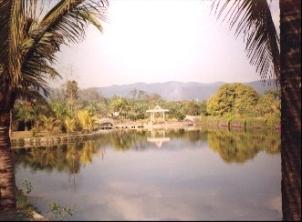 The Xishuangbanna Botanical Gardens