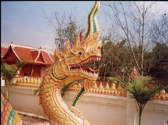 Yunnan32