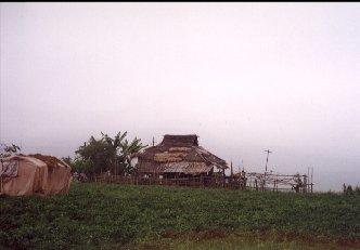 Yunnan34