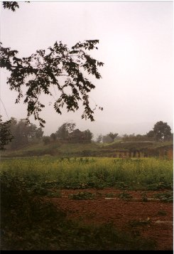Yunnan37