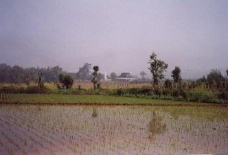 Yunnan38