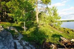 2016 Missinaibi Lake, Ontario - 29 of 37