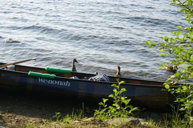 2016 Wakami Lake, Ontario - 10 of 24